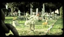 Italian Cemetery 12. Vintage stylized video clip.