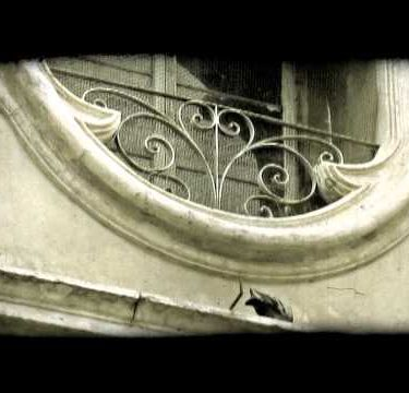 Pigeon on Building. Vintage stylized video clip.