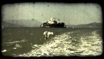 Seagulls fly. Vintage stylized video clip.