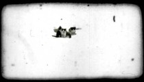 Four kittens together. Vintage stylized video clip.