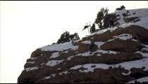 Slow-motion shot of base jumper skiin down side of clip and flipping in air.