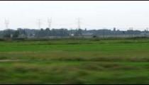 Shot of green fields in Amsterdam