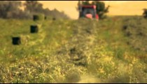 Racking focus shot of hay and farmer gathering hay using his tractor