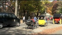 Central Park Carriage Bike Traffic