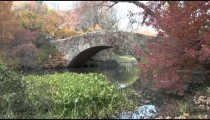 Central Park Bridge cu zoom