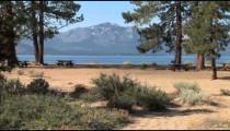 Nevada Beach Folliage