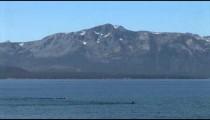 Lake Tahoe Swimmers zoom