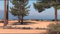 Nevada Beach Pines pan