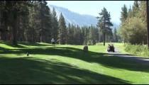 Edgewood Golfer