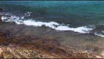 Shoreline Waves cu