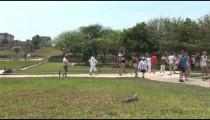 Tulum Ruins Walkway Iguana