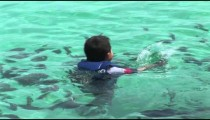 Child Swims Reef Fish