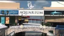 Cancun Aquarium zoom