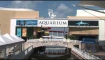 Cancun Aquarium Bridge zoom