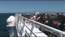Mexican Cruise People 2