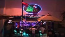 Martini Jungle Bar zoom