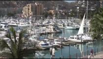 Cabo Marina Boats zoom
