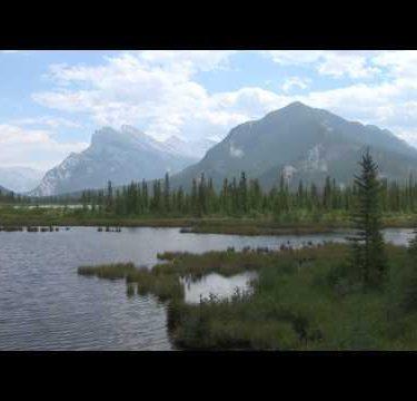 Vermillion Lake Marsh zoom 2