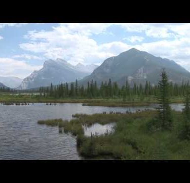 Vermillion Lake Marsh zoom