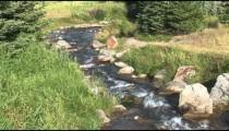 Johnson Lake Stream zoom