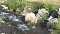 Johnson Lake Stream cu