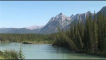 Bow River Pines Mountains zoom