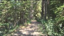 Banff Streamside Path