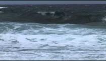 North Shore Waves cu