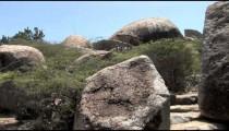 Ayo Rock Path Steps pans 2