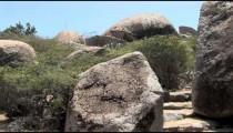 Ayo Rock Path Steps pans