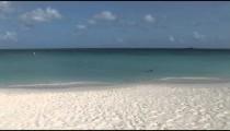 Aruba Seashore