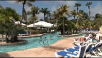 Aruba Resort Pool Swimmers zoom