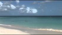 Aruba Beach swimmers