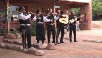 Mariachi Band zoom