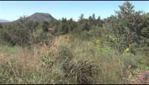Apache Landscape zooms