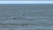 Oceanside Surfer Waits