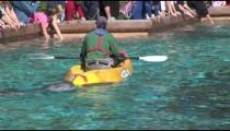 SeaWorld Dolphin Jokes