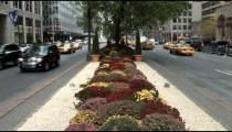NYC Park Avenue zoom 2