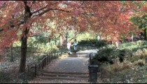 Central Park Walkway Steps zoom