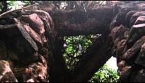 Mossy Rock Structure in Jardim Botanico, Rio de Janiero