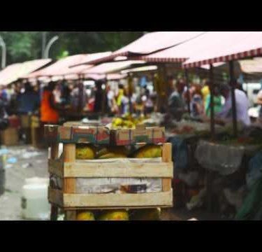 RIO DE JANEIRO, BRAZIL - JUNE 23: Slow motion of crate in market on June 23, 2013 in Rio, Brazil