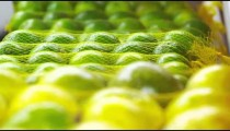 Racking close-up focus of green mandarin oranges at a market in Rio de Janeiro, Brazil