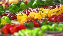 Close-up racking shot of different varieties of pepper at a market in Rio de Janeiro, Brazil