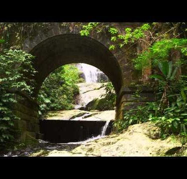 Tracking footage of a scenic jungle stream flowing underneath an arched bridge.
