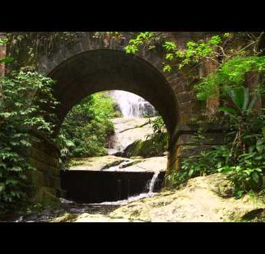 Tracking shot of a scenic jungle stream flowing underneath a bridge arch.