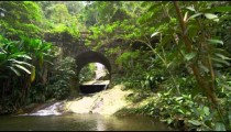 Tracking footage of jungle stream, waterfall as seen through bridge