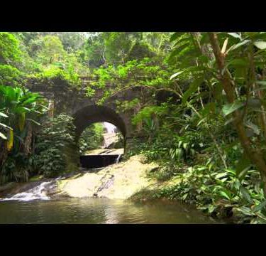 Tracking footage of jungle stream, waterfall as seen through stone arch