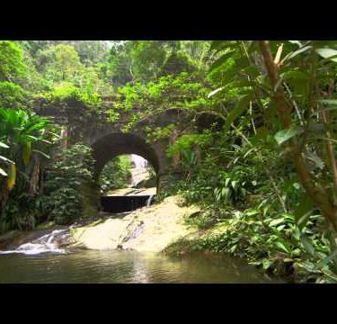 Tracking shot of jungle stream, waterfall as seen through stone arch