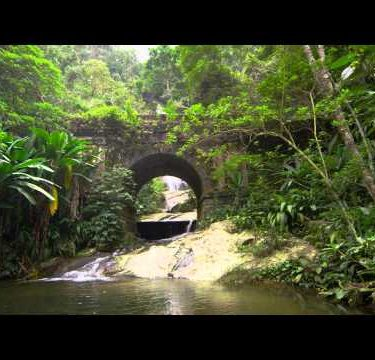 Tracking shot of jungle stream, waterfall seen through stone archway