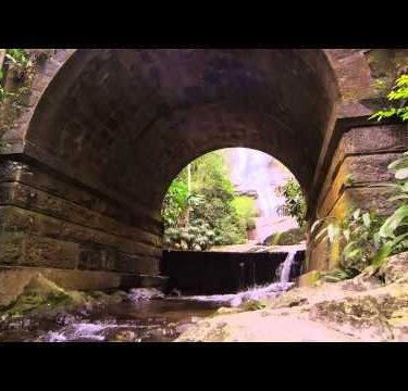 Tracking shot of jungle stream, waterfall, and stone arch